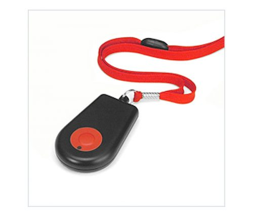 Portable Pendant RF Trigger